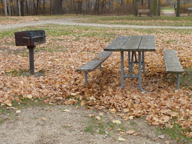 Sleepy Hollow State Park grill and picnic tables