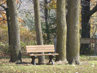 Sleepy Hollow State Park Bench in Horseman's Staging Area